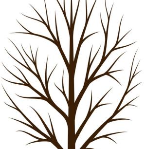 momhrewego-branches