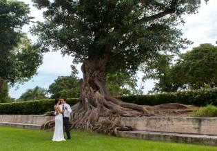 Francias Wedding D10